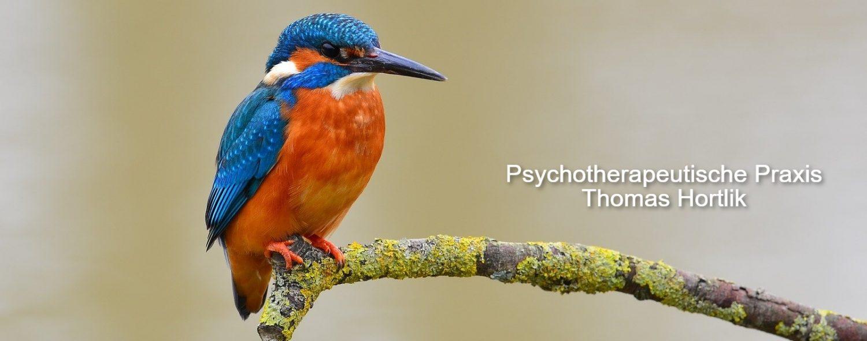 Psychotherapeutische Praxis